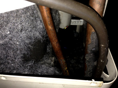 Mice Damaging Air Conditioning